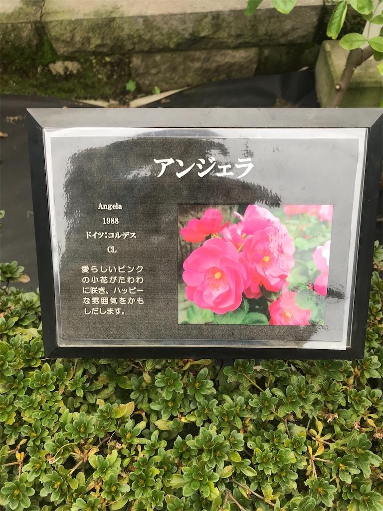f:id:TokuheiKumagai:20201014215752j:plain