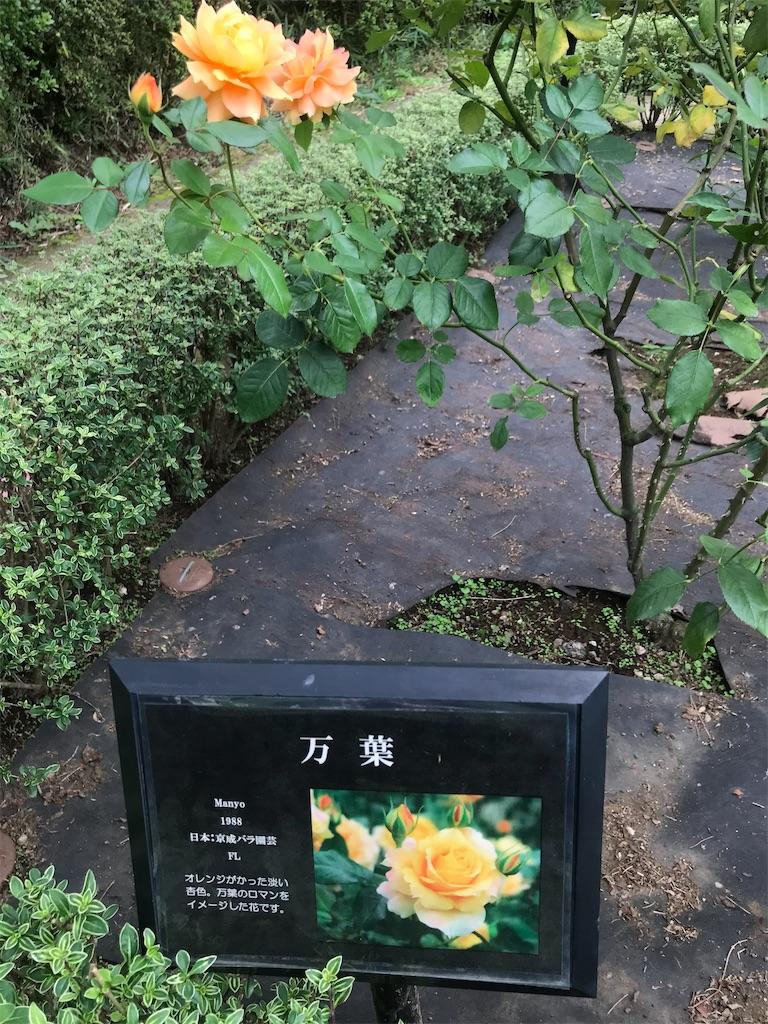 f:id:TokuheiKumagai:20201014220041j:plain