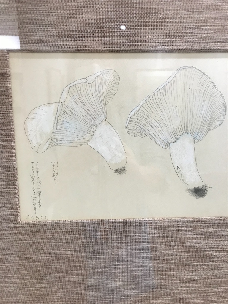 f:id:TokuheiKumagai:20201015221117j:plain
