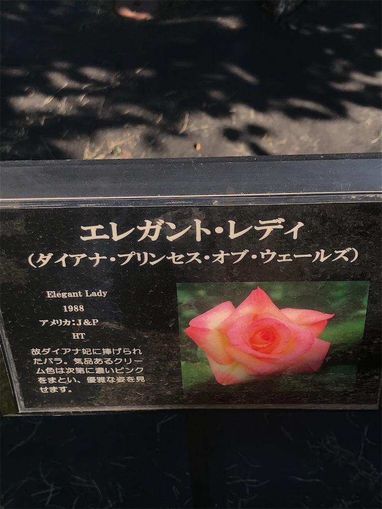 f:id:TokuheiKumagai:20201110200254j:plain
