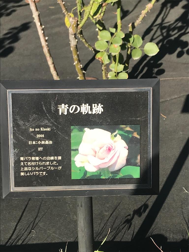 f:id:TokuheiKumagai:20201110205548j:plain