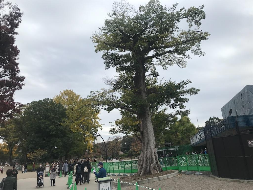 f:id:TokuheiKumagai:20201112230230j:plain