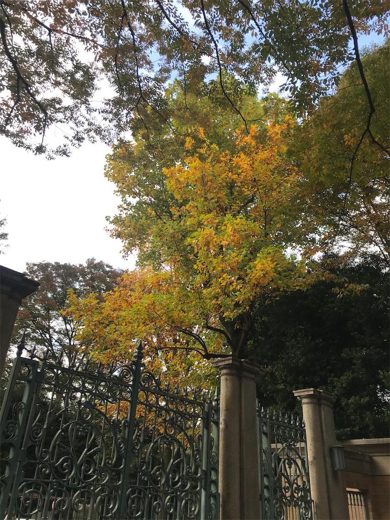 f:id:TokuheiKumagai:20201112230241j:plain