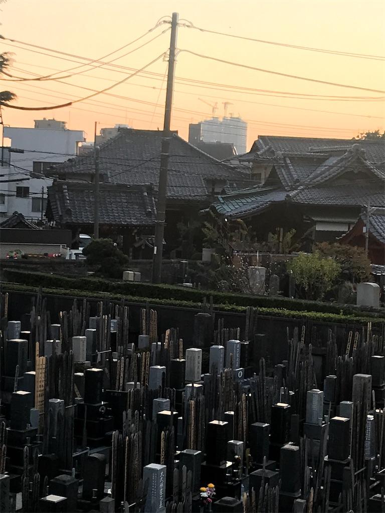 f:id:TokuheiKumagai:20201117200947j:plain