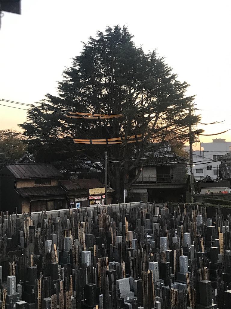 f:id:TokuheiKumagai:20201117201002j:plain