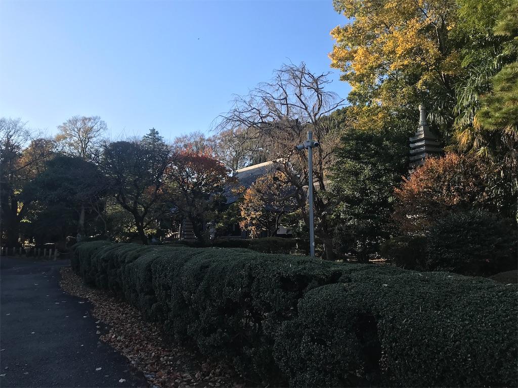 f:id:TokuheiKumagai:20201121221659j:plain