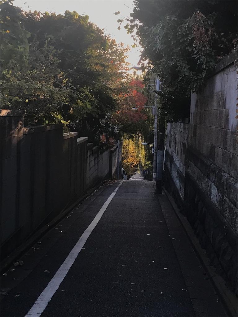 f:id:TokuheiKumagai:20201126203459j:plain
