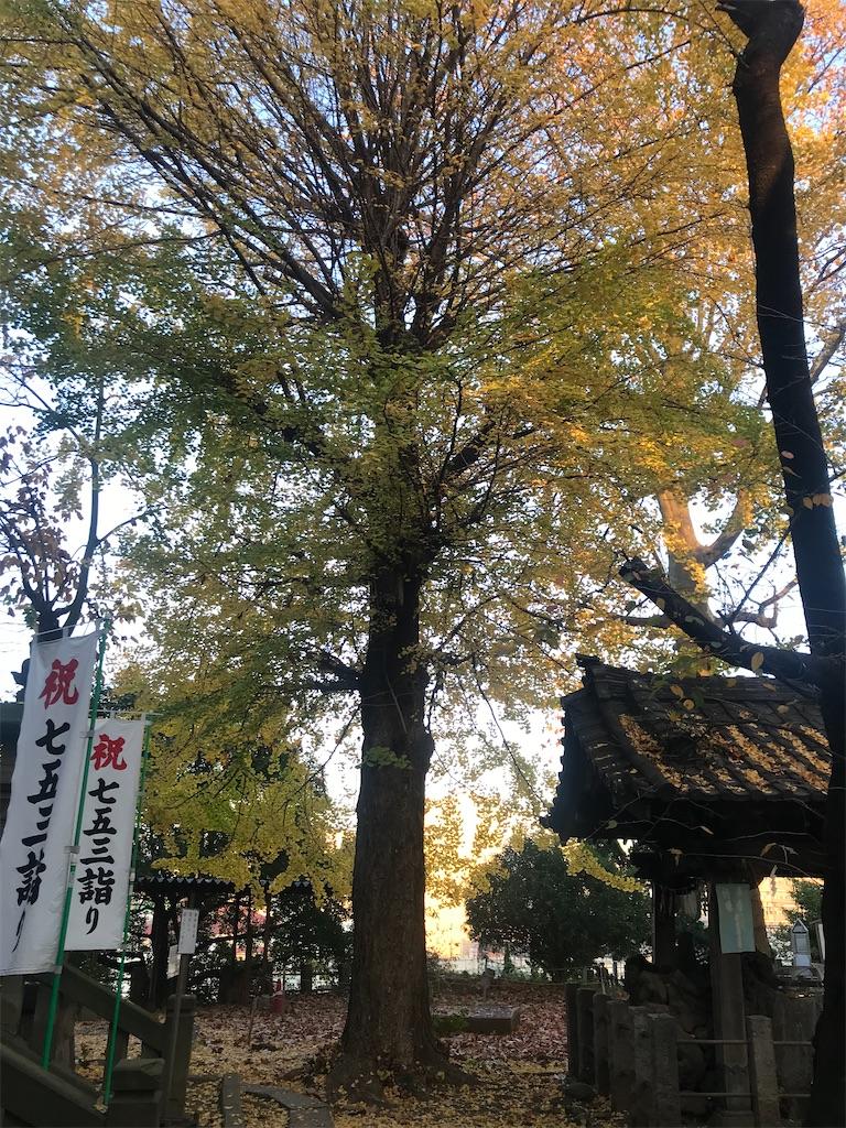 f:id:TokuheiKumagai:20201126203533j:plain
