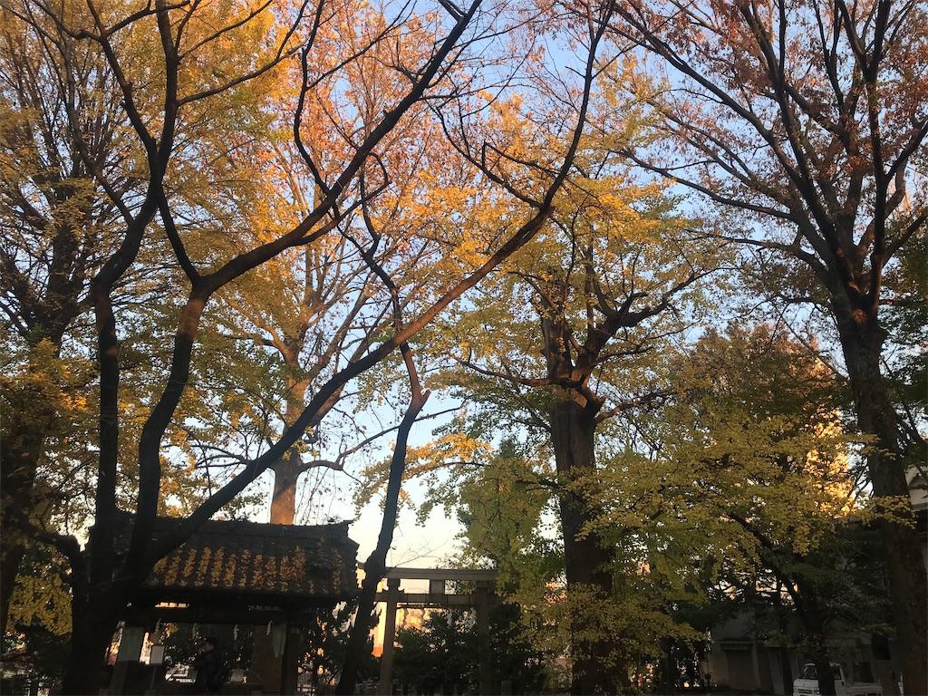f:id:TokuheiKumagai:20201126203601j:plain