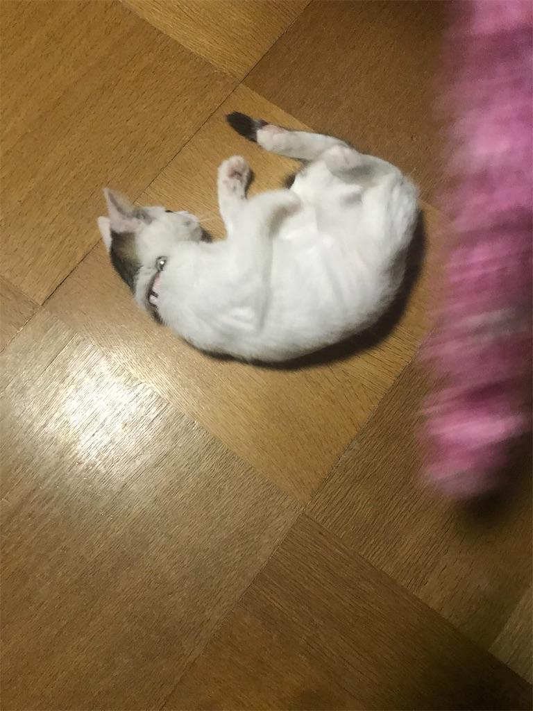 f:id:TokuheiKumagai:20201210223842j:plain