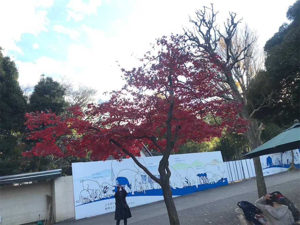 f:id:TokuheiKumagai:20201215191148j:plain