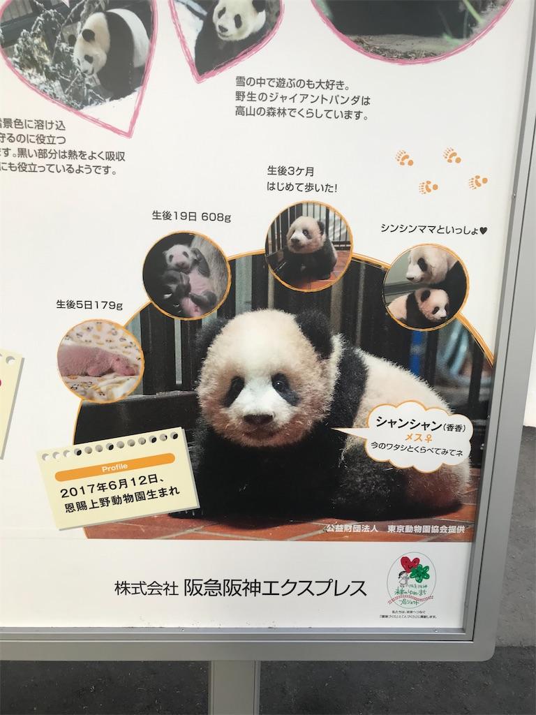 f:id:TokuheiKumagai:20201215191151j:plain