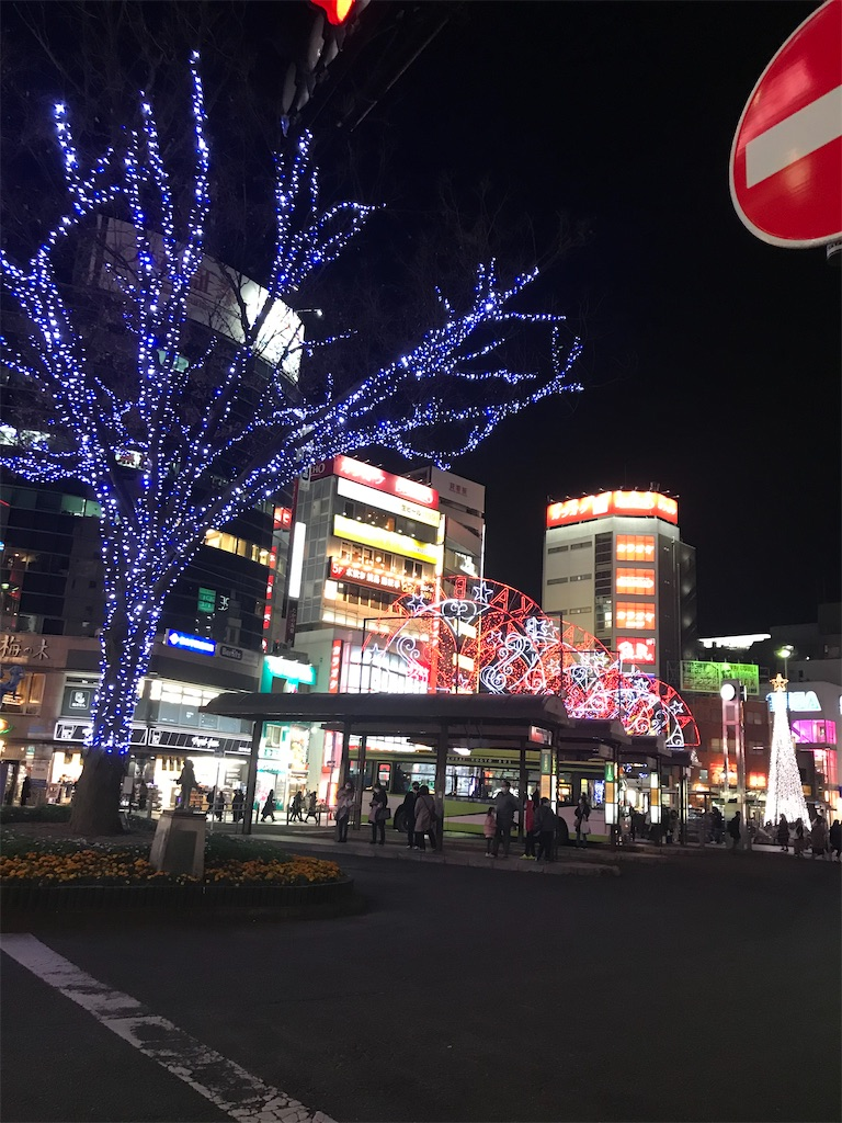 f:id:TokuheiKumagai:20201220230329j:plain