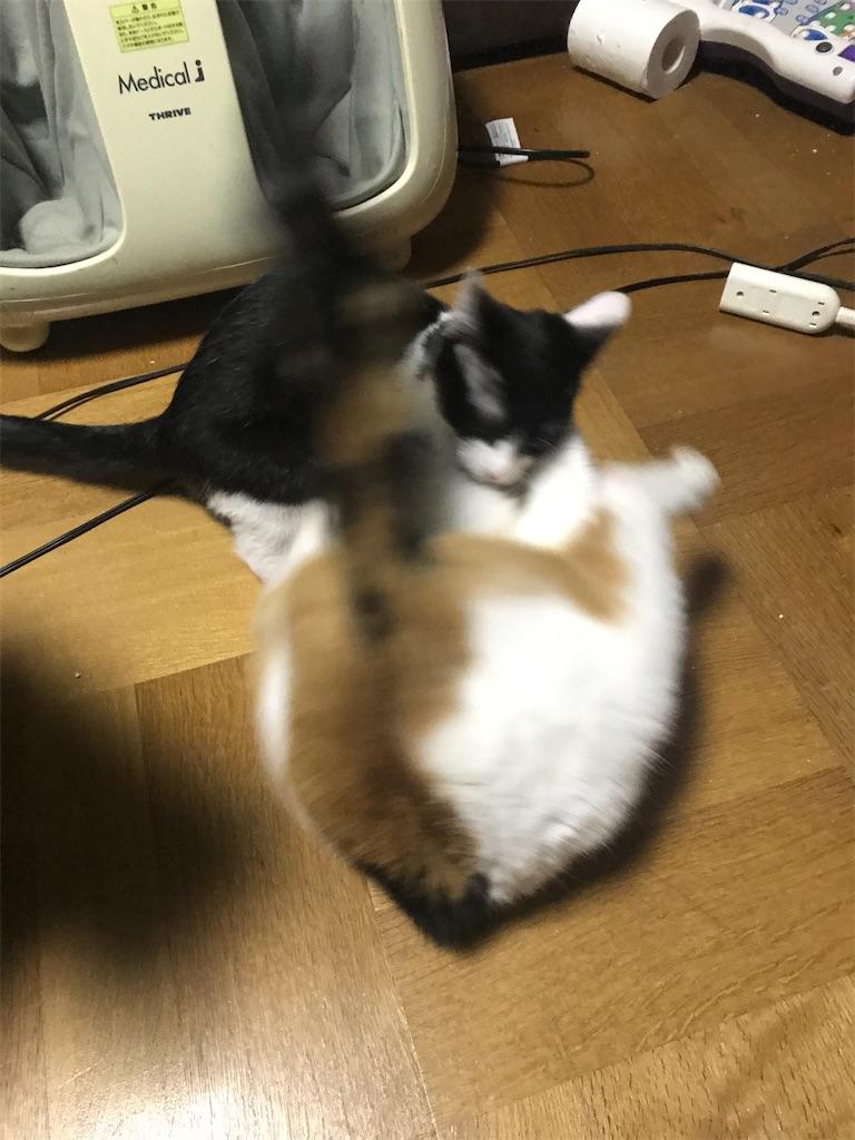 f:id:TokuheiKumagai:20210107185751j:plain