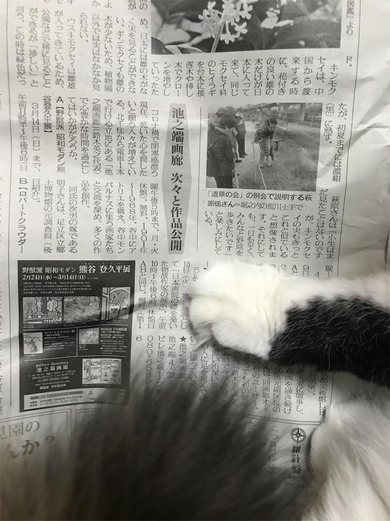 f:id:TokuheiKumagai:20210304200815j:plain