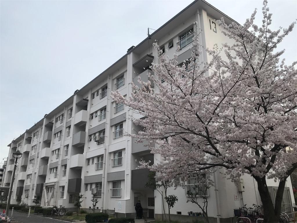 f:id:TokuheiKumagai:20210328134922j:plain