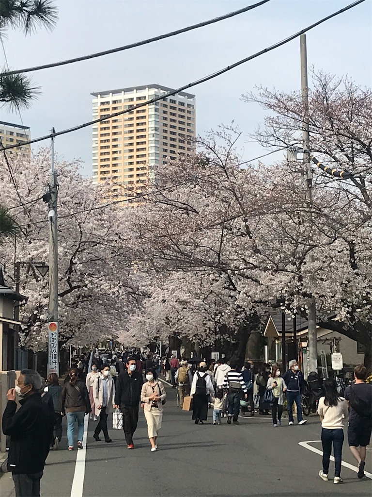 f:id:TokuheiKumagai:20210328134939j:plain