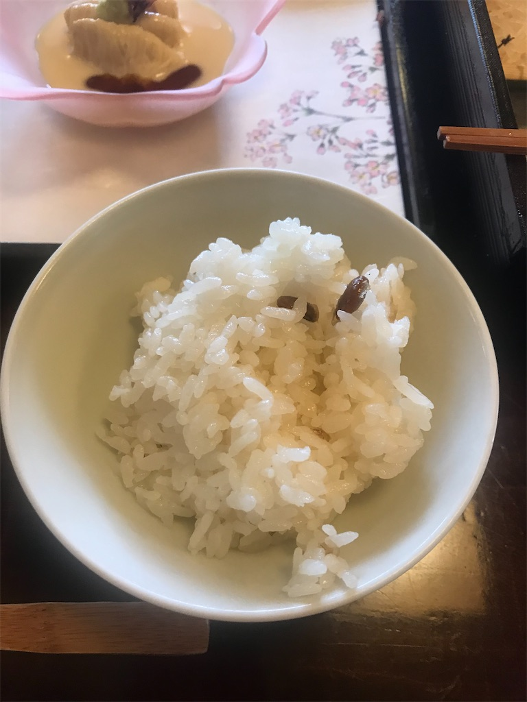f:id:TokuheiKumagai:20210330201002j:plain