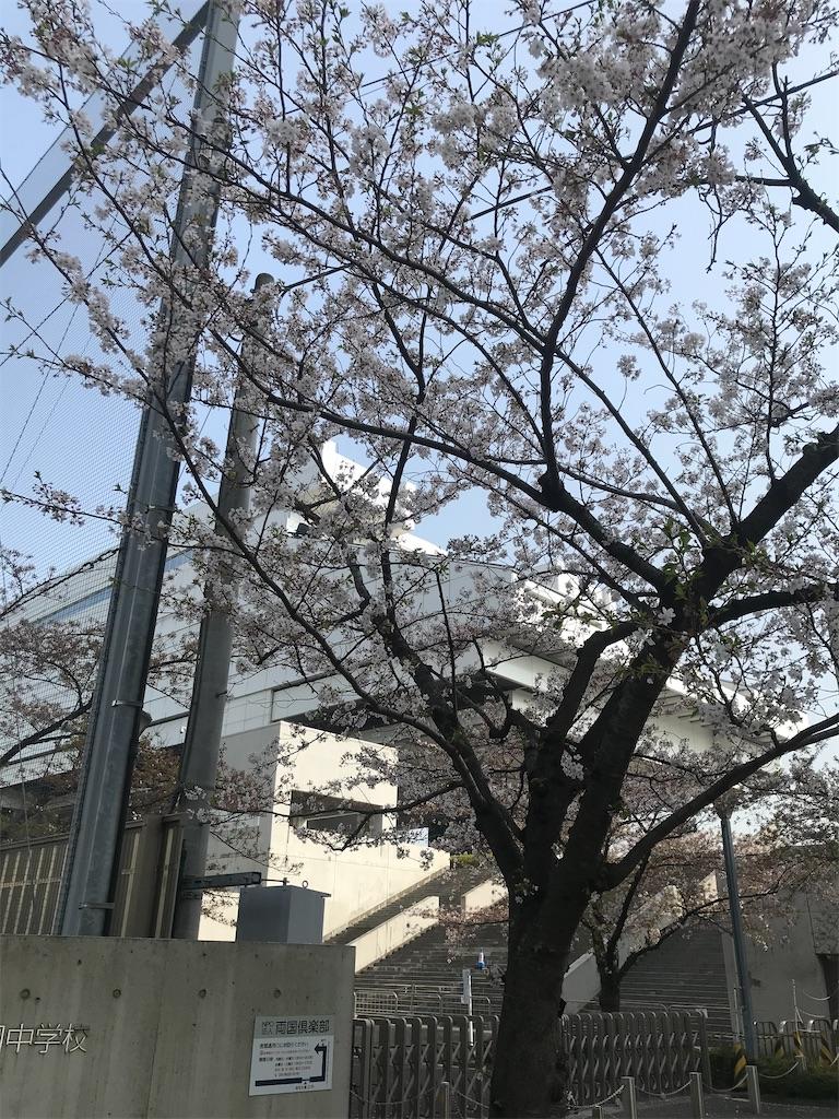 f:id:TokuheiKumagai:20210331200502j:plain