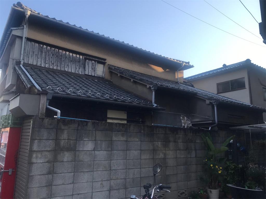 f:id:TokuheiKumagai:20210407181719j:plain