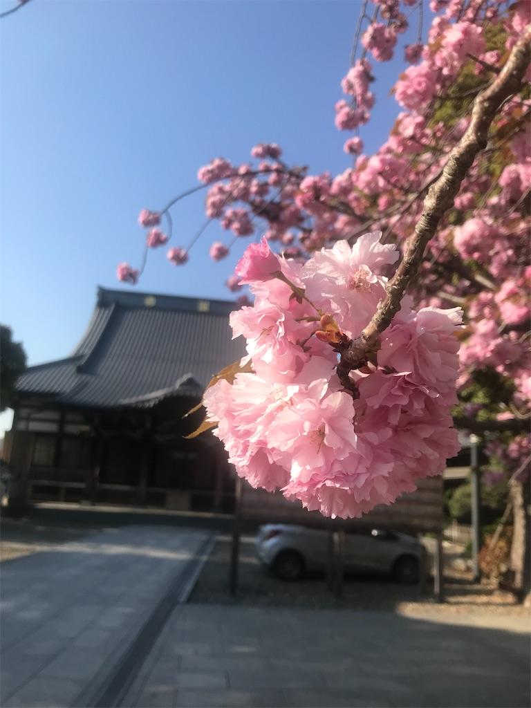f:id:TokuheiKumagai:20210407181730j:plain