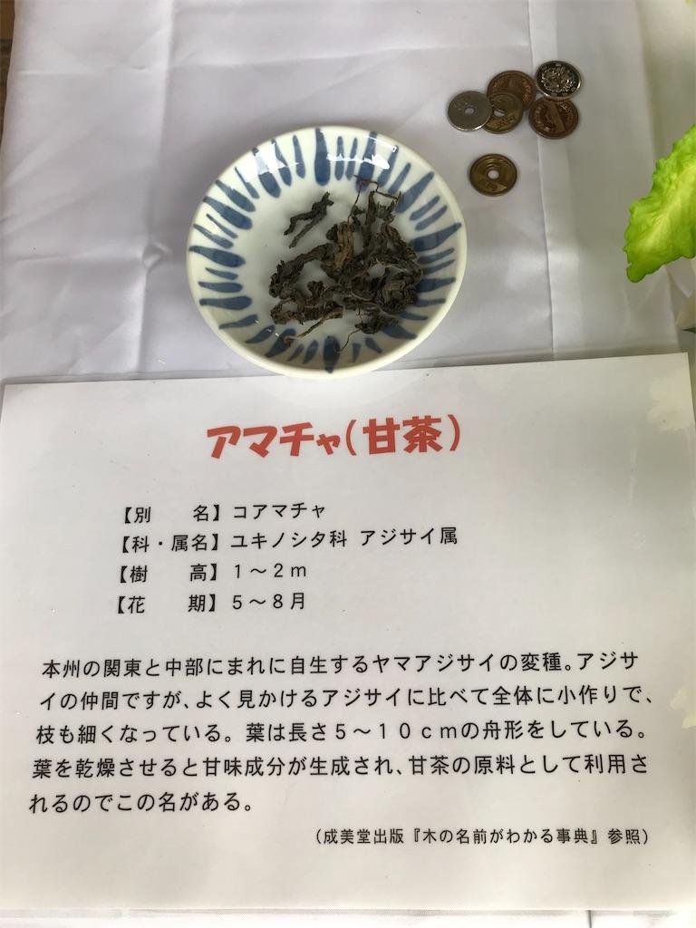 f:id:TokuheiKumagai:20210408195158j:plain