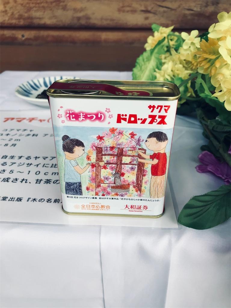 f:id:TokuheiKumagai:20210408195520j:plain