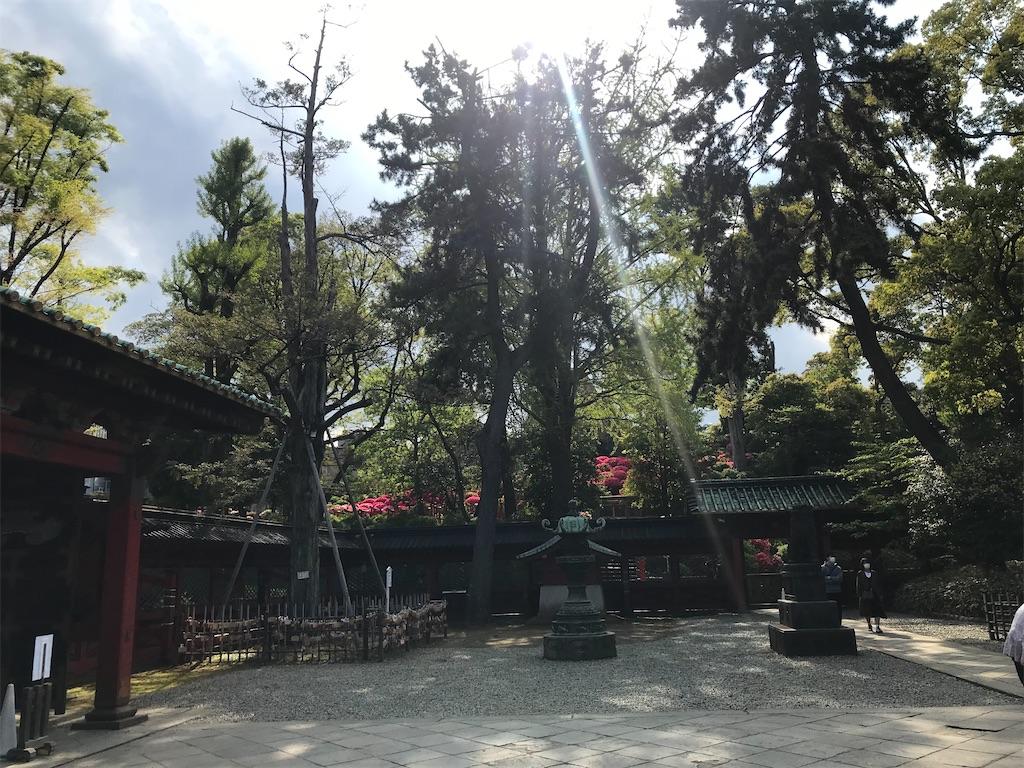 f:id:TokuheiKumagai:20210408195558j:plain