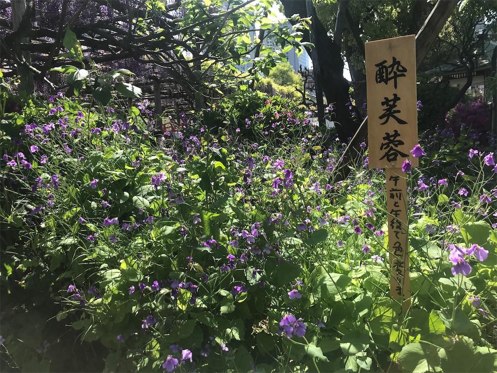 f:id:TokuheiKumagai:20210415222920j:plain