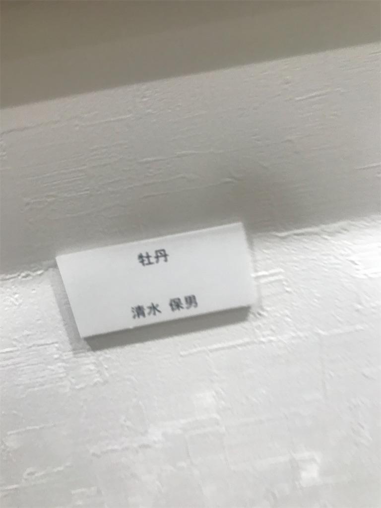 f:id:TokuheiKumagai:20210520142123j:plain