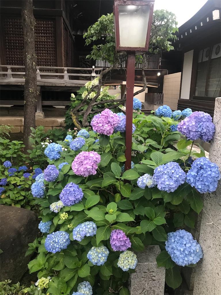 f:id:TokuheiKumagai:20210523120150j:plain