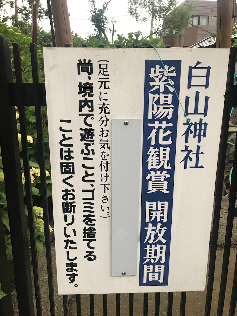 f:id:TokuheiKumagai:20210523120203j:plain