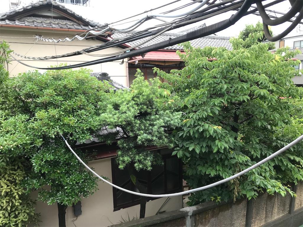 f:id:TokuheiKumagai:20210531201054j:plain