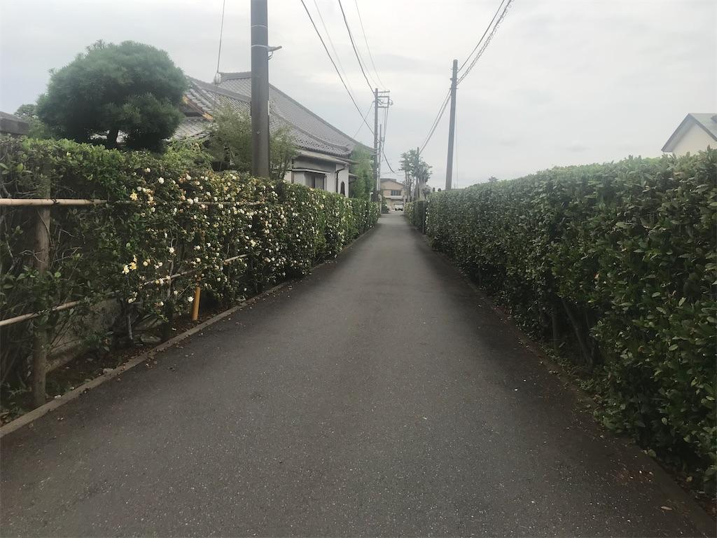 f:id:TokuheiKumagai:20210627230618j:plain