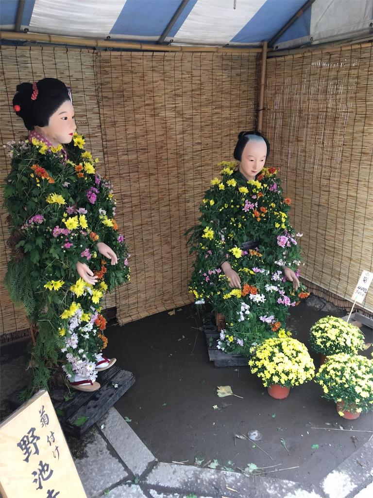 f:id:TokuheiKumagai:20210825213128j:image