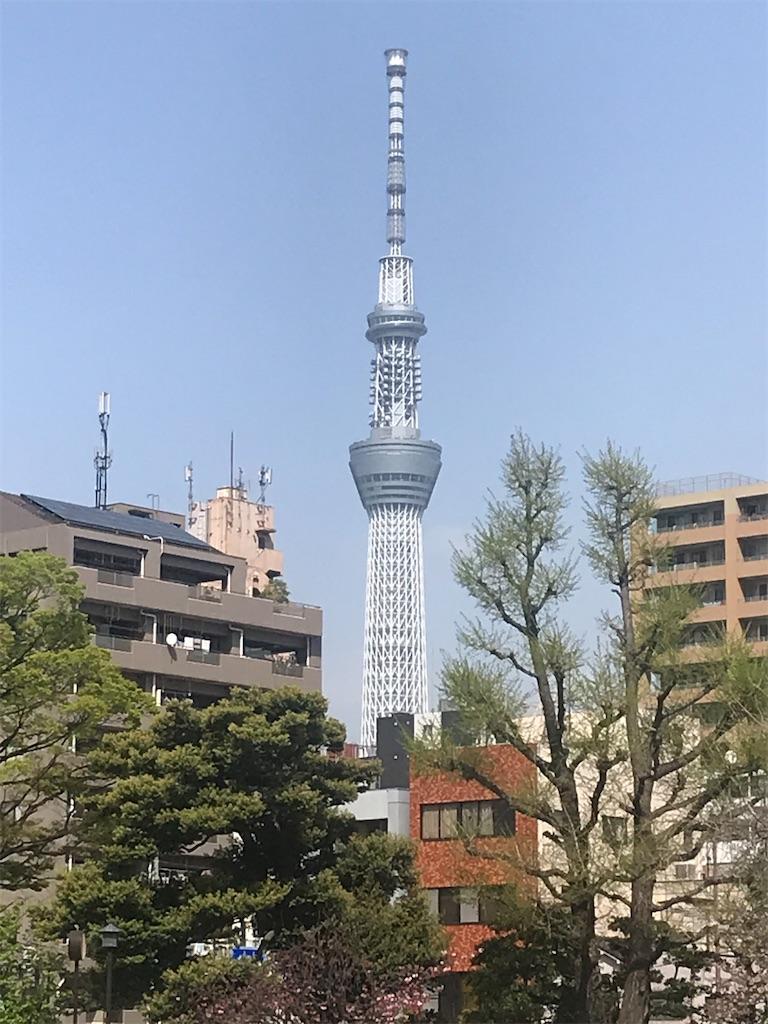f:id:TokuheiKumagai:20210901160844j:image