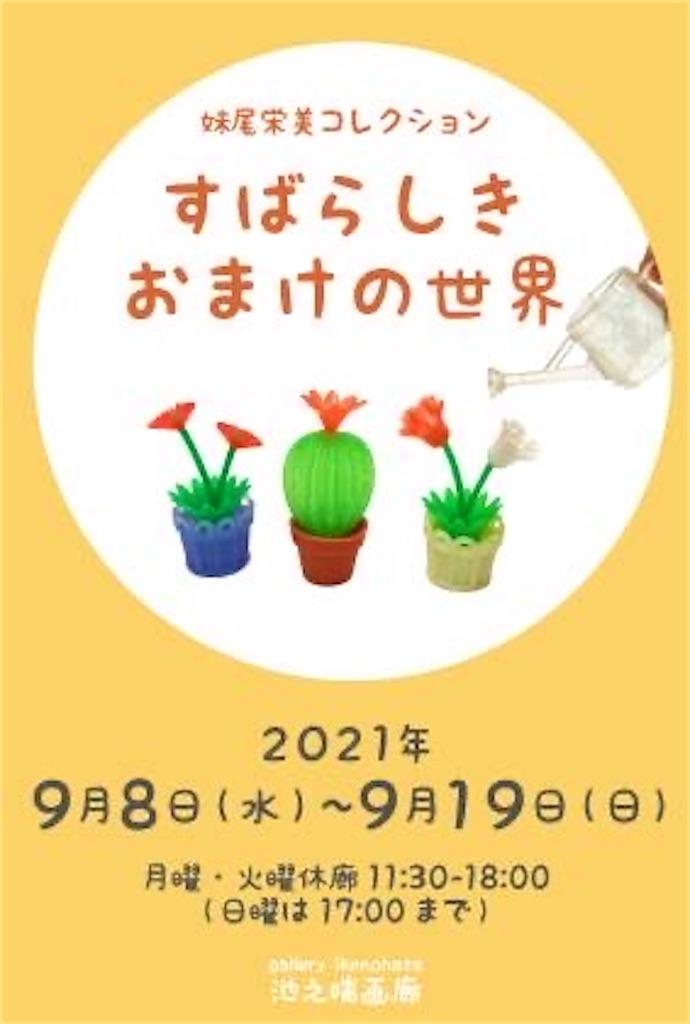 f:id:TokuheiKumagai:20210904230646j:image