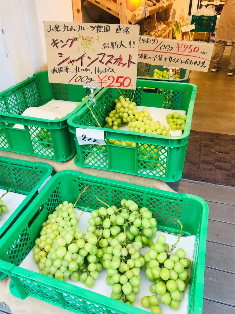 f:id:TokuheiKumagai:20210912194647j:image
