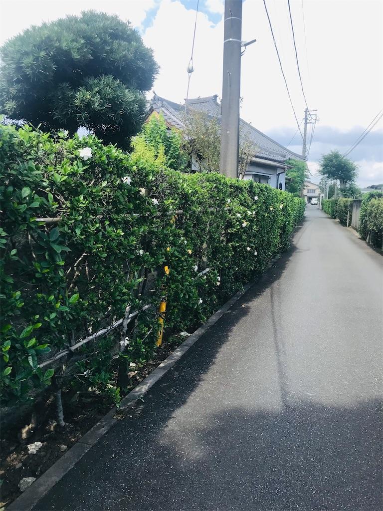 f:id:TokuheiKumagai:20210916201313j:image