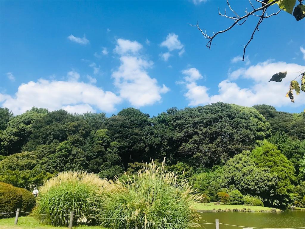 f:id:TokuheiKumagai:20210920213456j:image