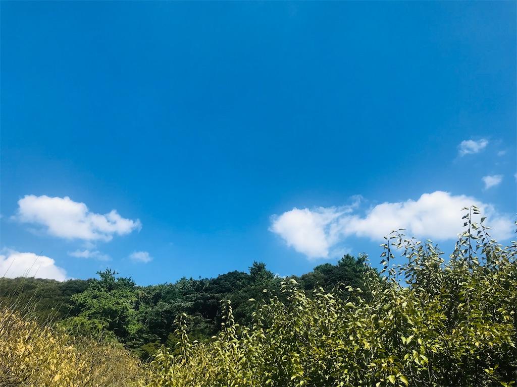 f:id:TokuheiKumagai:20210920213504j:image