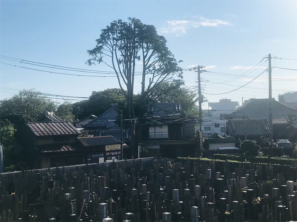 f:id:TokuheiKumagai:20211002194909j:image