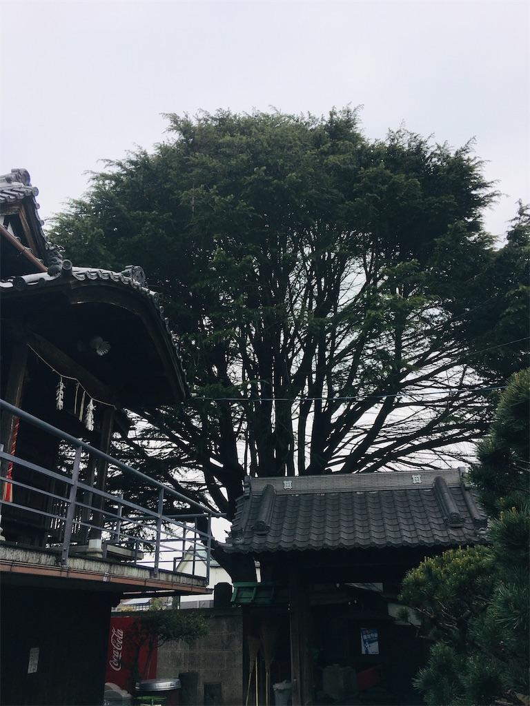 f:id:TokuheiKumagai:20211003191915j:image