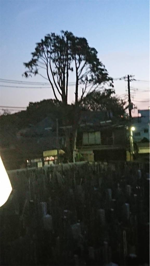 f:id:TokuheiKumagai:20211004183258j:image
