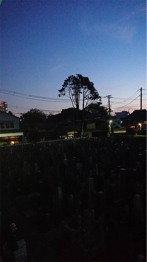 f:id:TokuheiKumagai:20211004183301j:image