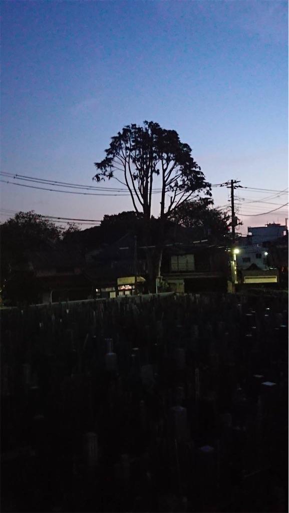 f:id:TokuheiKumagai:20211004183303j:image