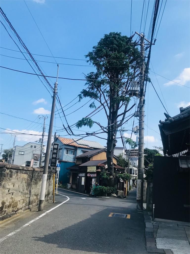 f:id:TokuheiKumagai:20211006202509j:image
