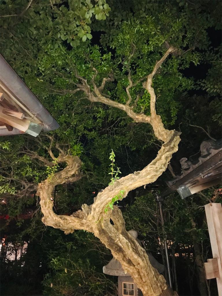 f:id:TokuheiKumagai:20211008221521j:image