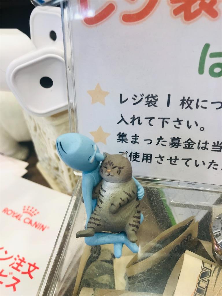 f:id:TokuheiKumagai:20211011195539j:image