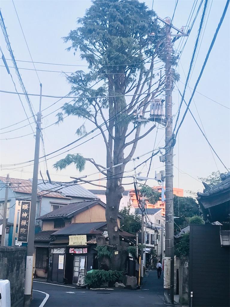 f:id:TokuheiKumagai:20211011195550j:image